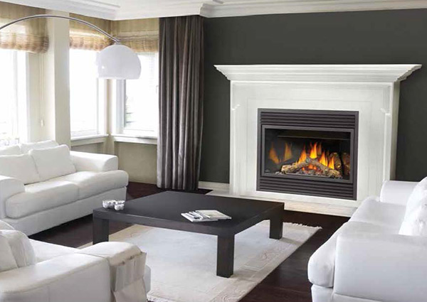 Napoleons Outstanding Features Fireplaces